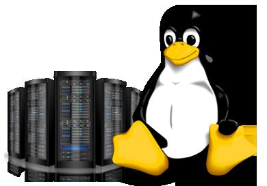 Что такое линукс хостинг dnsmanager хостинг